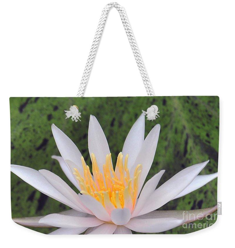 Water Lilies Weekender Tote Bag featuring the photograph water lily 85 Arc-en-ciel by Terri Winkler