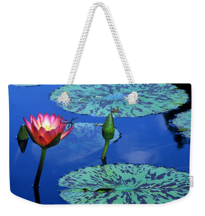 Water Lily Weekender Tote Bag featuring the photograph Water Lily by TB Sojka