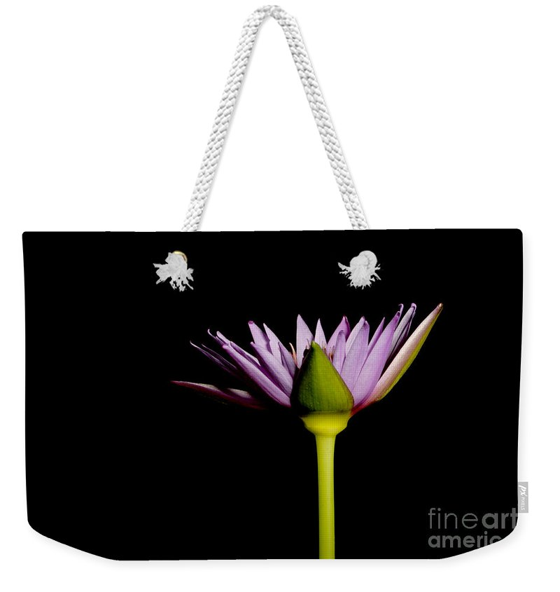 Flora Weekender Tote Bag featuring the photograph Waterlily Opening Part Of A Series by Ted Kinsman