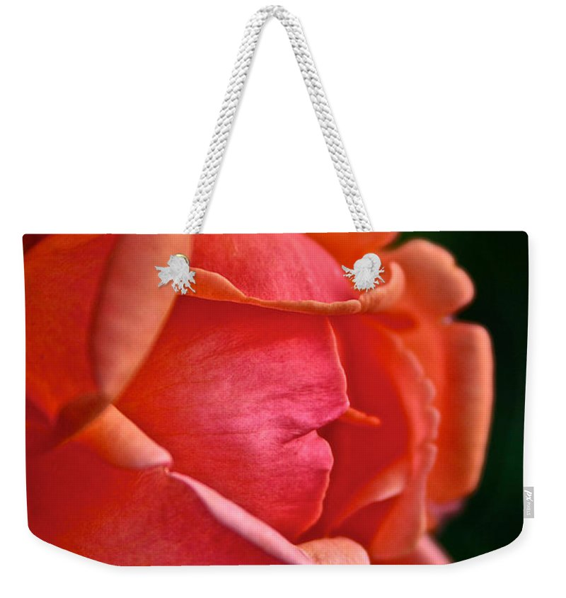 Outdoors Weekender Tote Bag featuring the photograph Wayward Rose by Susan Herber