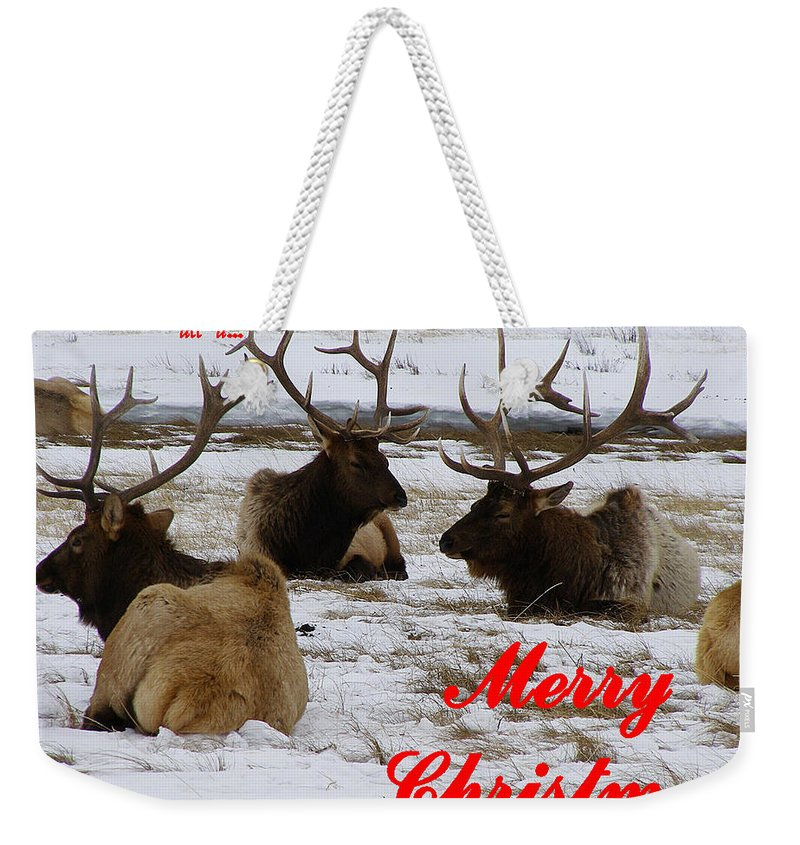 Christmas Cards Weekender Tote Bag featuring the photograph We All Got Together Christmas by DeeLon Merritt