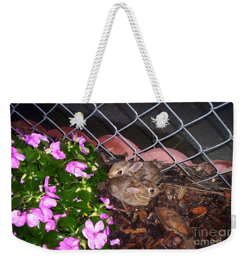 Bunnies Weekender Tote Bag featuring the photograph We Are Lost by Julie Brugh Riffey