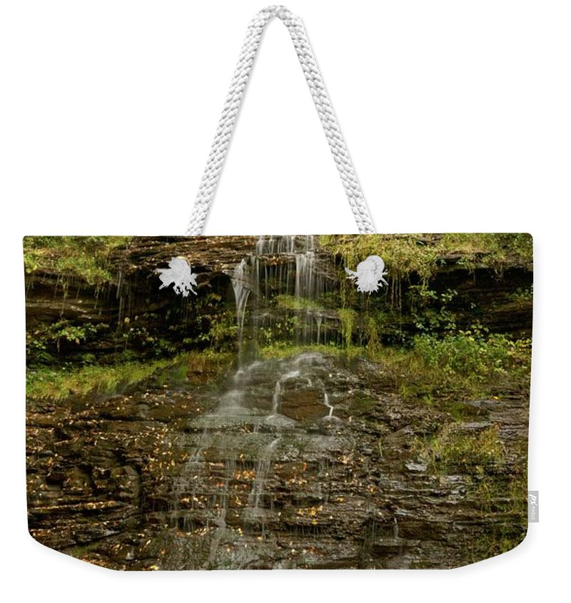 Cathedral Falls Weekender Tote Bag featuring the photograph West Virginia Waterfall by Michael Peychich