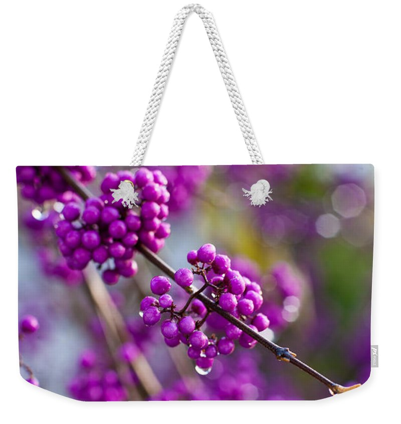 Beauty Berry Weekender Tote Bag featuring the photograph Wet Purple by Mike Reid