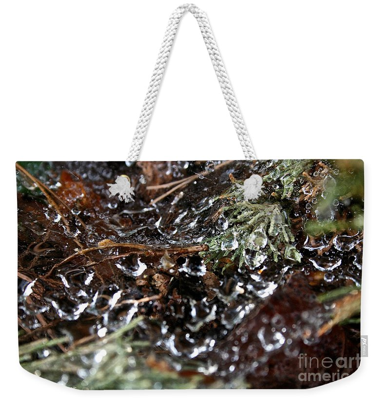 Spider Weekender Tote Bag featuring the photograph Wet Web by Susan Herber