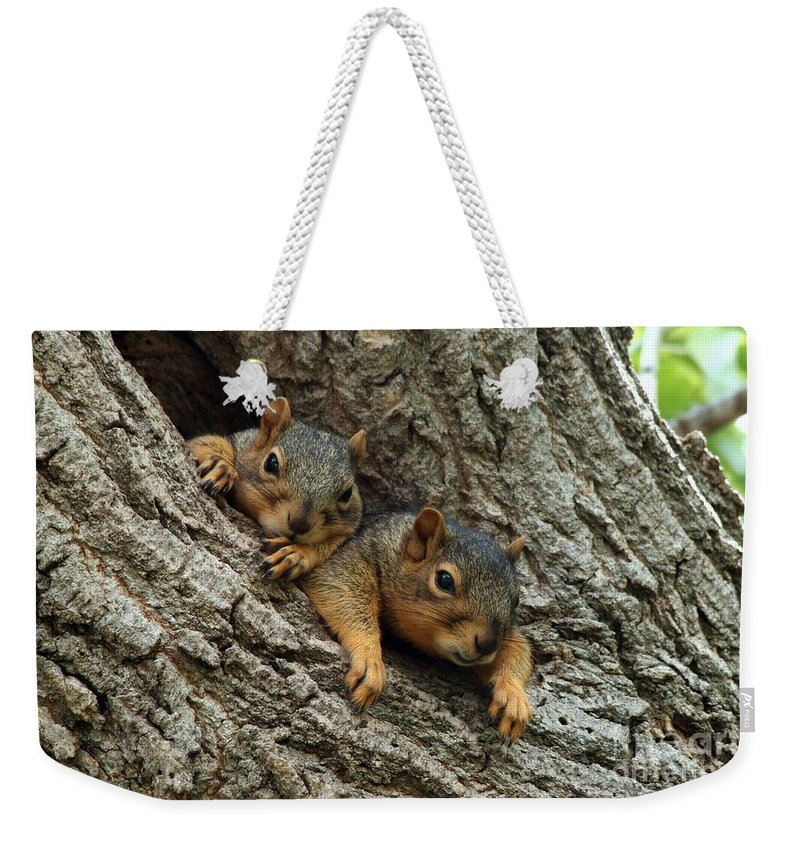 Squirrel Weekender Tote Bag featuring the photograph What A Day by Lori Tordsen