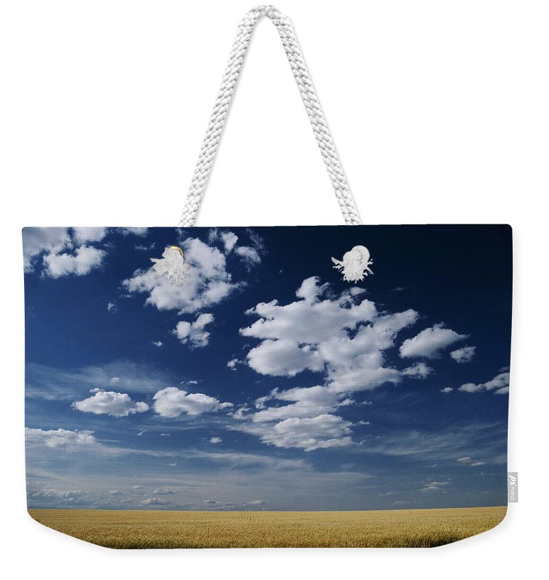 Wheat Fields Weekender Tote Bag featuring the photograph Wheat Field, Central Washington by Michael Klesius