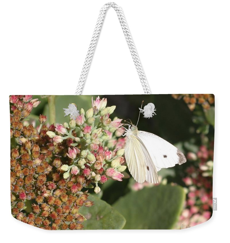 Butterfly Weekender Tote Bag featuring the photograph White Cabbage by Living Color Photography Lorraine Lynch