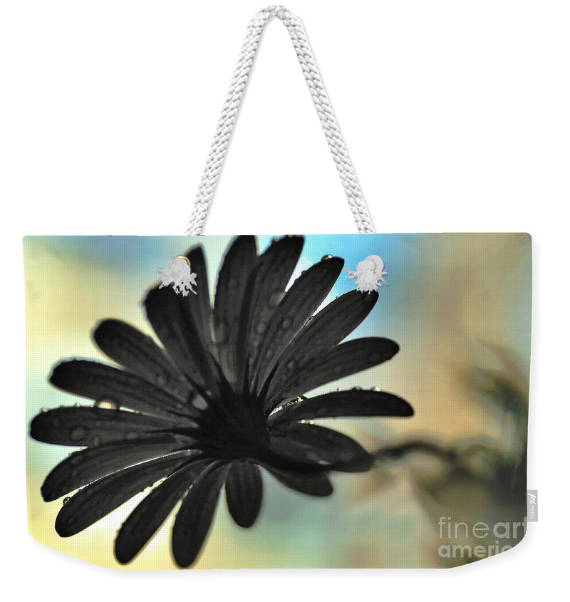 Photography Weekender Tote Bag featuring the photograph White Daisy Silhouette by Kaye Menner