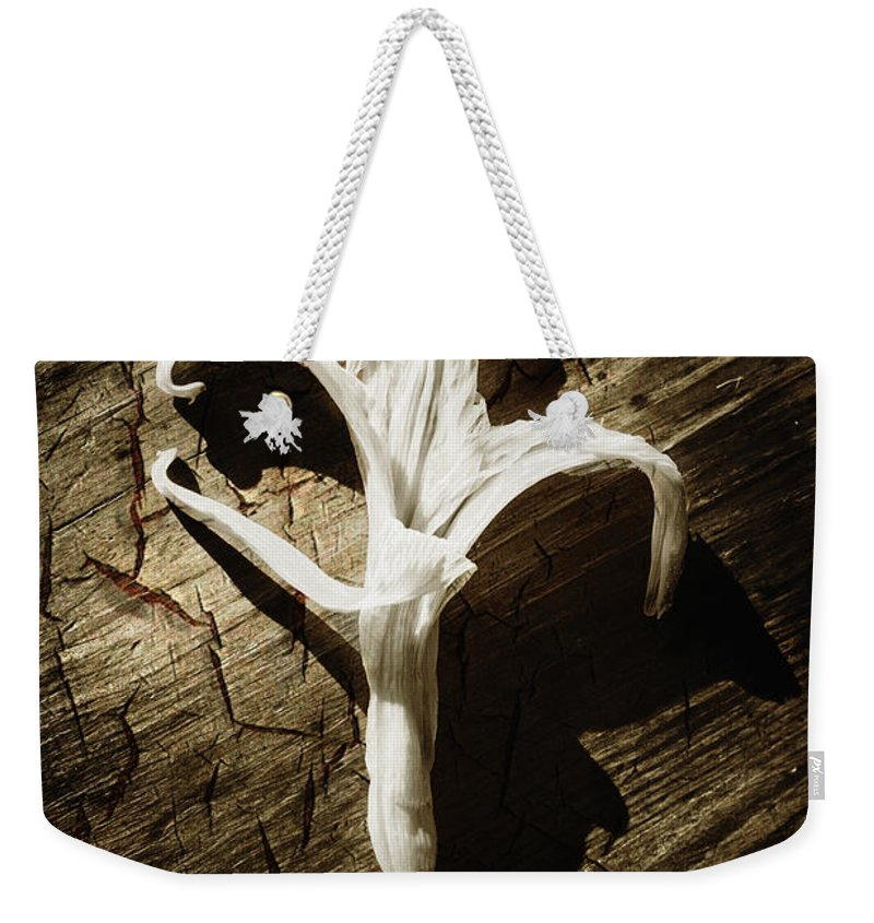 Age Weekender Tote Bag featuring the photograph White Flower by Skip Nall