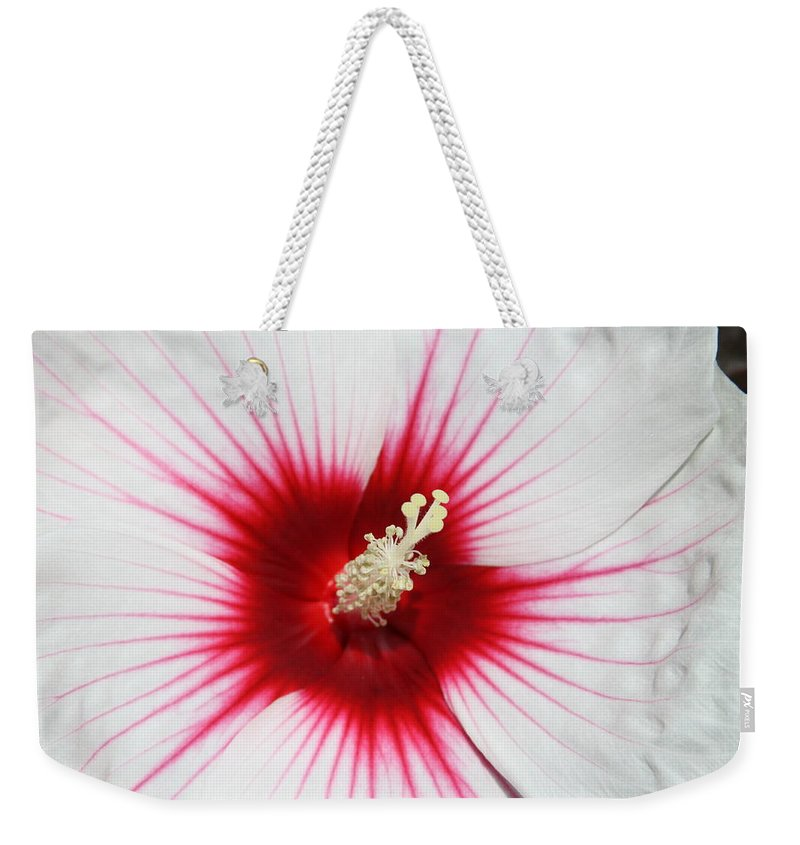 White Weekender Tote Bag featuring the photograph White Hibiscus by Andrea Lynch