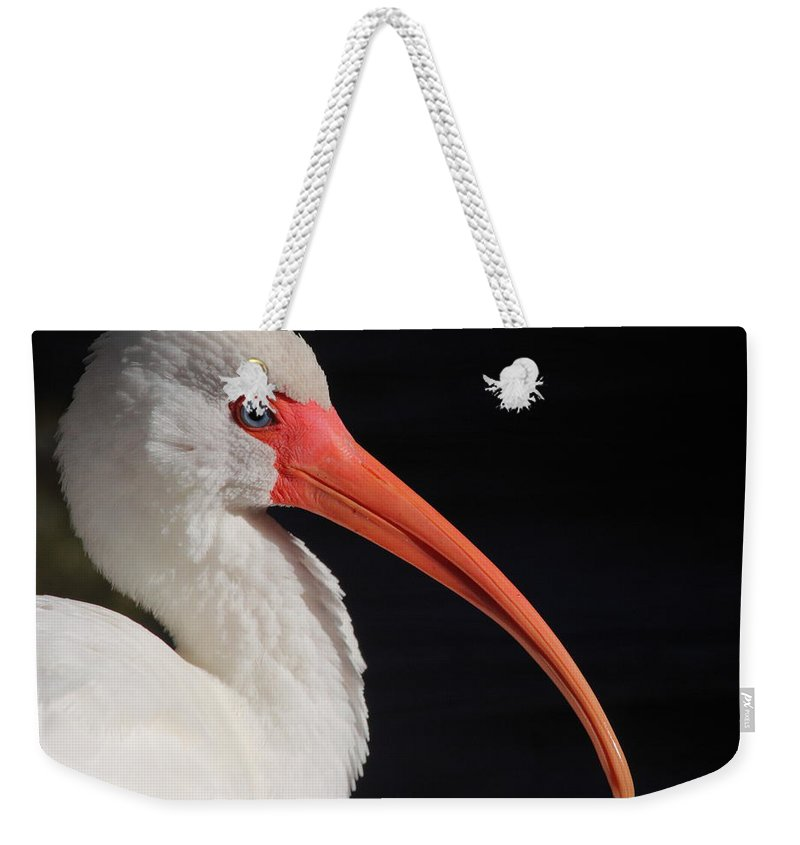 White Weekender Tote Bag featuring the photograph White Ibis Portrait by Bruce J Robinson