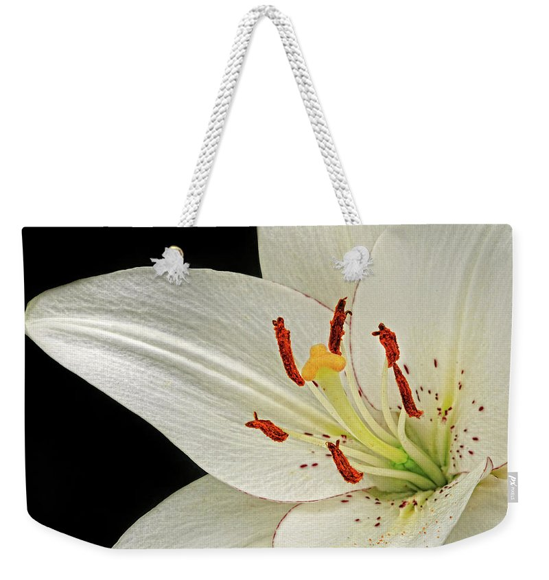 Lily Weekender Tote Bag featuring the photograph White Lily by Dave Mills