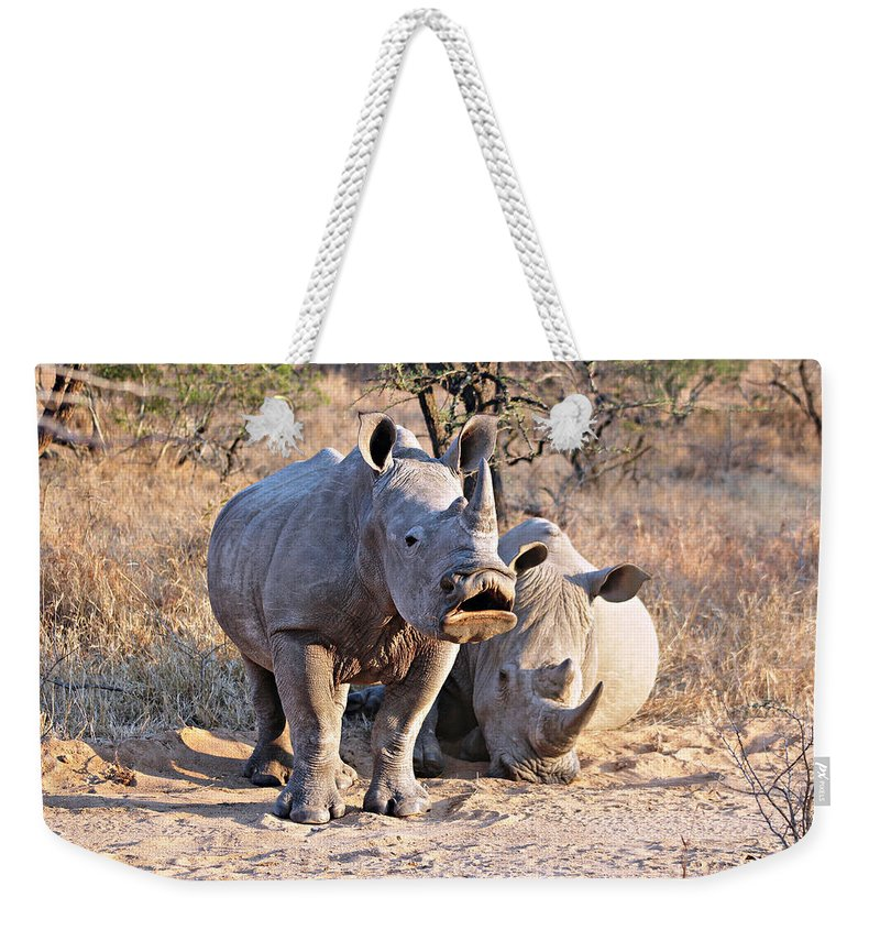 Africa Weekender Tote Bag featuring the photograph White Rhinoceros by Paul Fell