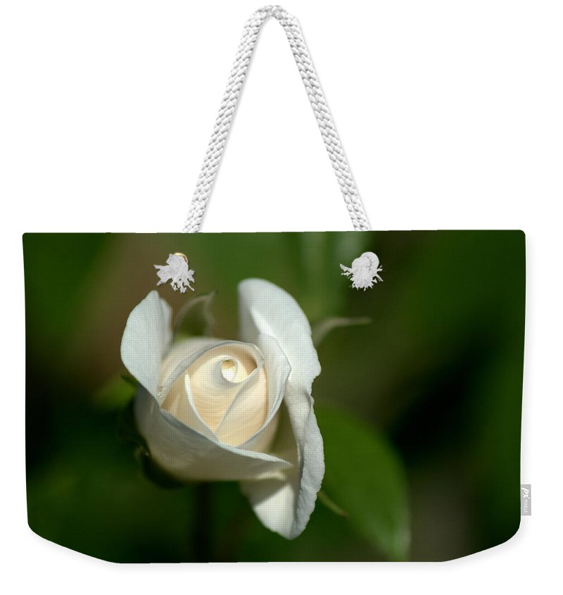 White Rose Weekender Tote Bag featuring the photograph White Rose by Chris Day