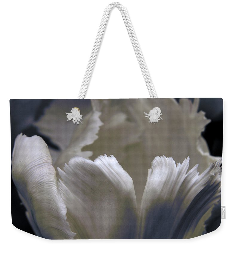 Tulip Weekender Tote Bag featuring the photograph White Tulip by Nancy Griswold