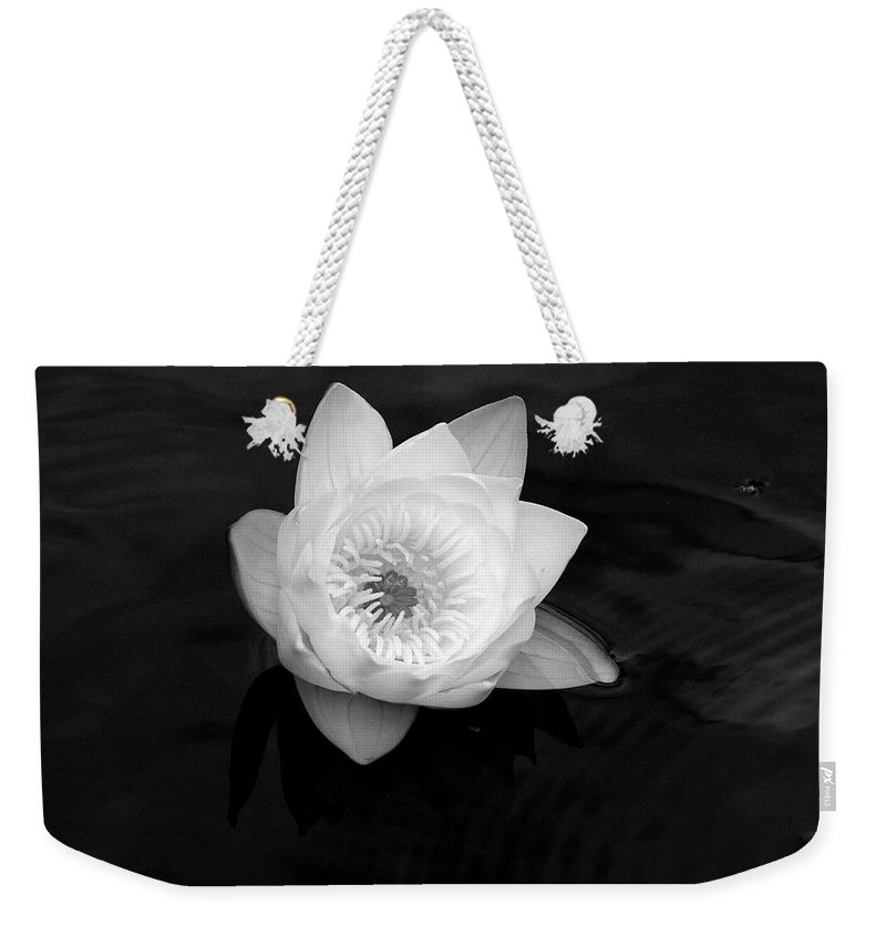 Lehtokukka Weekender Tote Bag featuring the photograph White Water-lily 3 by Jouko Lehto