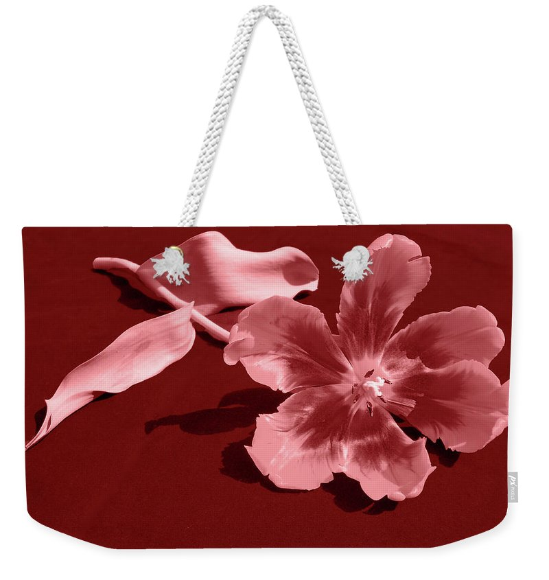 Flower Weekender Tote Bag featuring the photograph Wide Open by Julia Raddatz