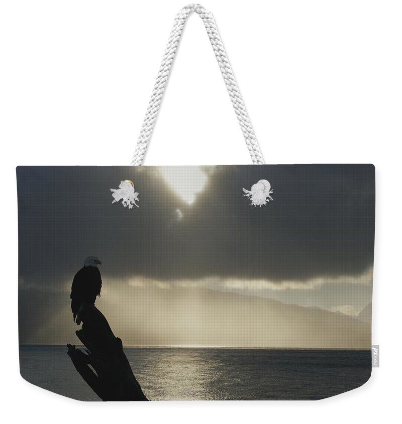 homer Weekender Tote Bag featuring the photograph With Dispersing Clouds And The Morning by Norbert Rosing