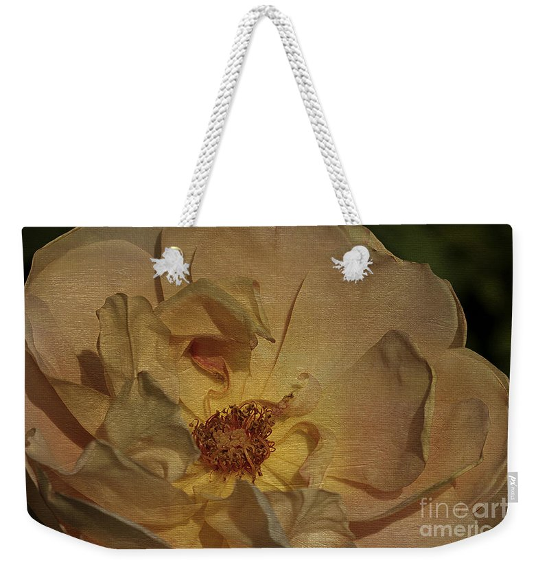 Flower Weekender Tote Bag featuring the photograph Withering Rose by Deborah Benoit