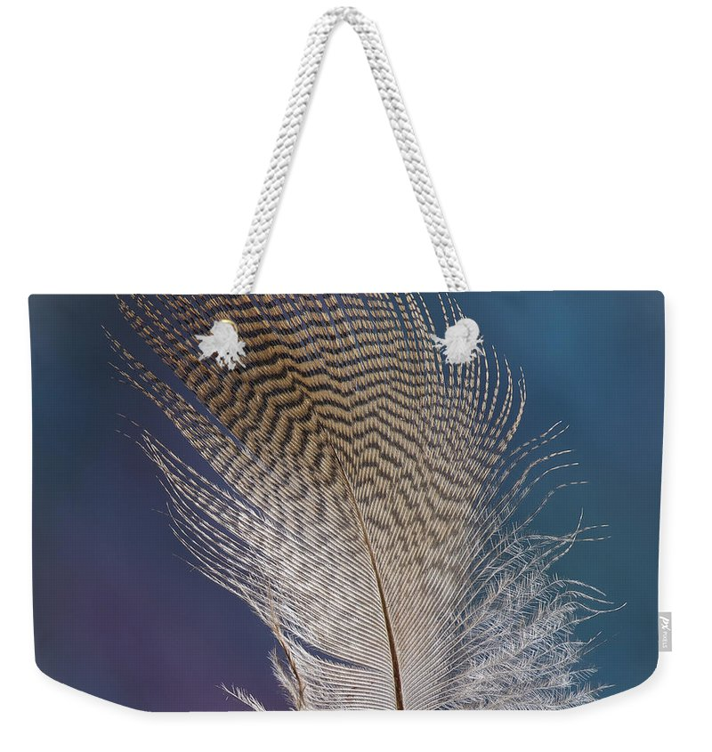 Jean Noren Weekender Tote Bag featuring the photograph Wood Duck Down by Jean Noren