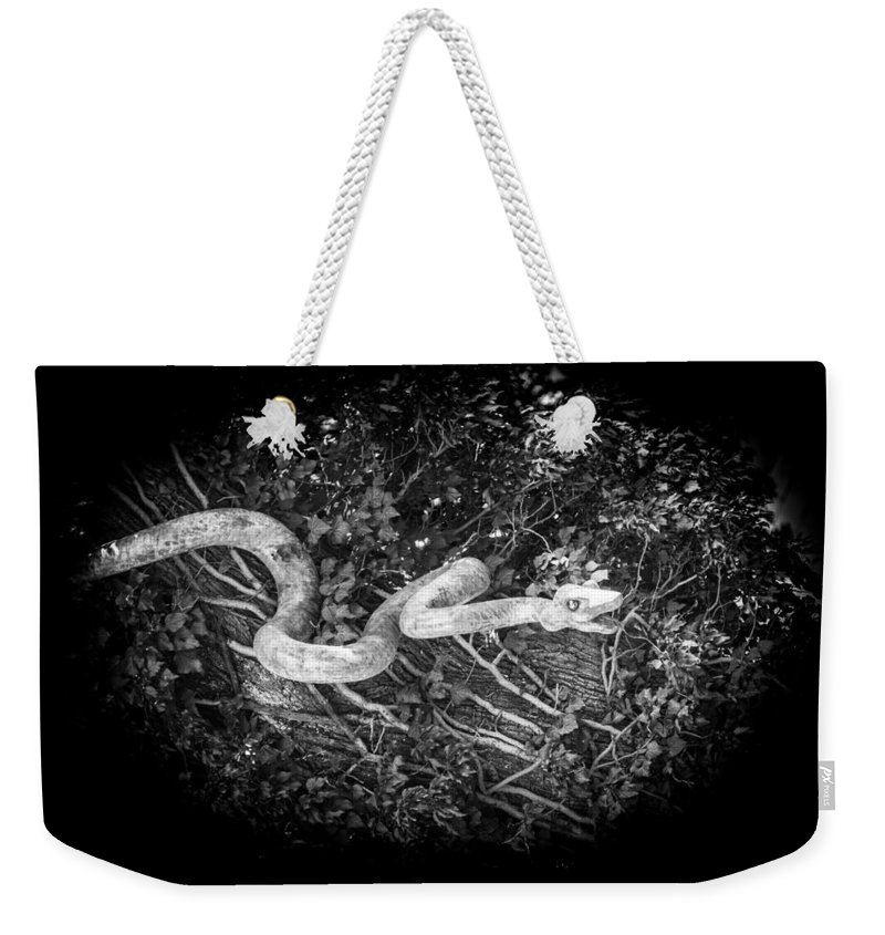 Ralf Weekender Tote Bag featuring the photograph Wooden Snake by Ralf Kaiser