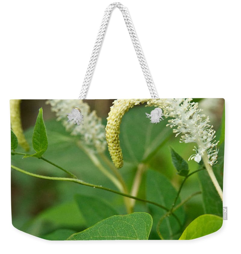 Woodland Weekender Tote Bag featuring the photograph Woodland Flower 2 by Douglas Barnett