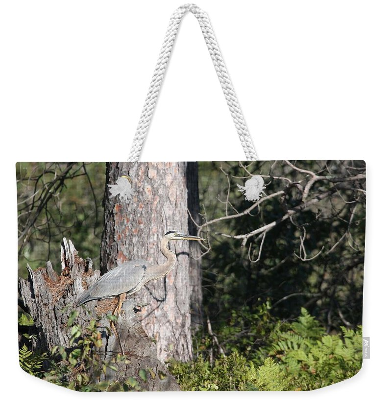 Great Blue Heron Weekender Tote Bag featuring the photograph Woodland Great Blue Heron by Teresa McGill