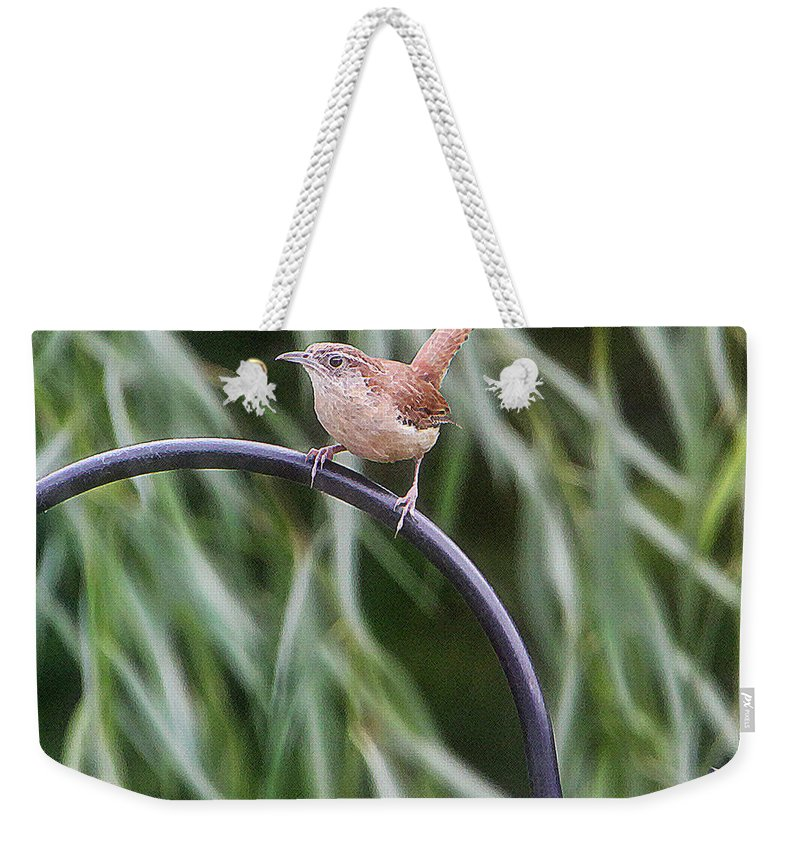 Bird Weekender Tote Bag featuring the photograph Wren by Ericamaxine Price