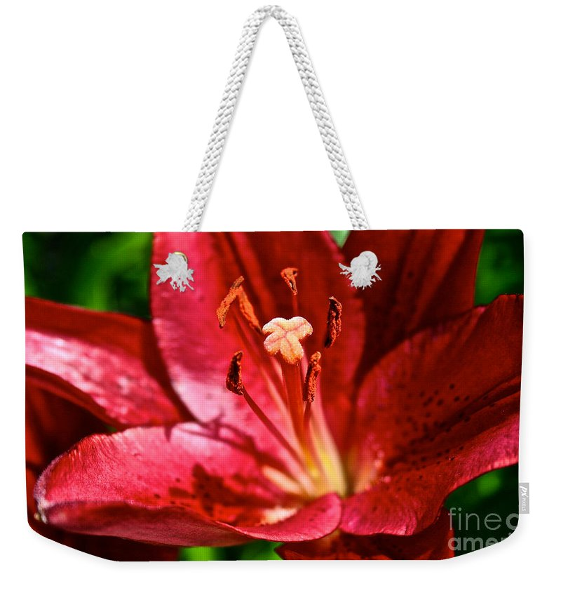 Garden Weekender Tote Bag featuring the photograph X Marks The Spot by Susan Herber