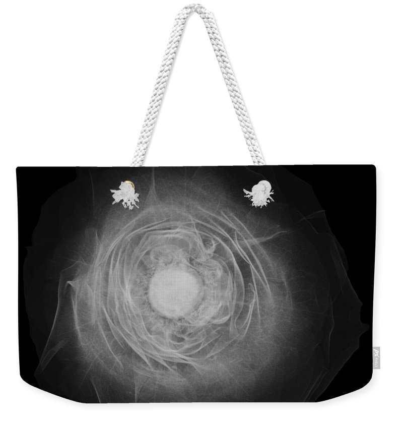 Radiograph Weekender Tote Bag featuring the photograph X-ray Of A Rose by Ted Kinsman