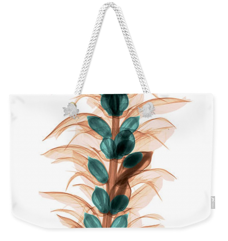 Xray Weekender Tote Bag featuring the photograph X-ray Of An Acanthus Flower by Ted Kinsman