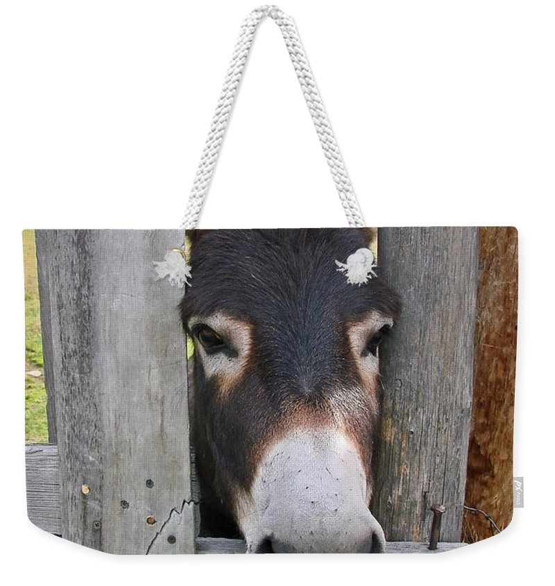 Donkey Weekender Tote Bag featuring the photograph Yee Haw by Athena Mckinzie