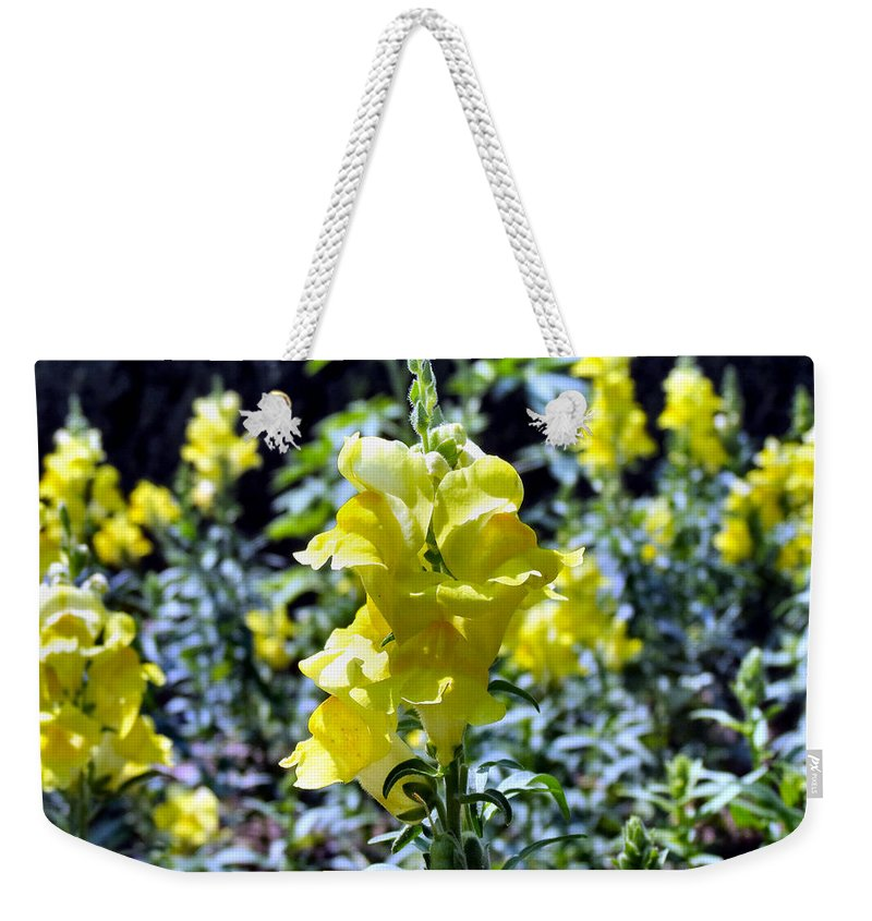 Snap Weekender Tote Bag featuring the photograph Yellow Dragons by Art Dingo
