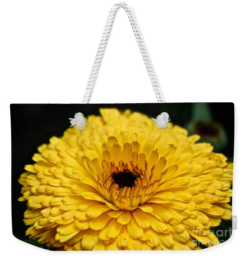 Garden Weekender Tote Bag featuring the photograph Yellow Gold by Susan Herber