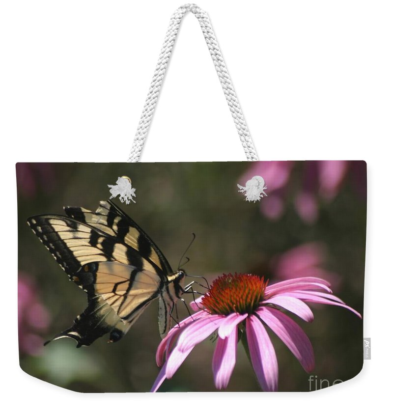 Butterfly Weekender Tote Bag featuring the photograph Yellow Swallowtail And Purple Coneflower by Living Color Photography Lorraine Lynch