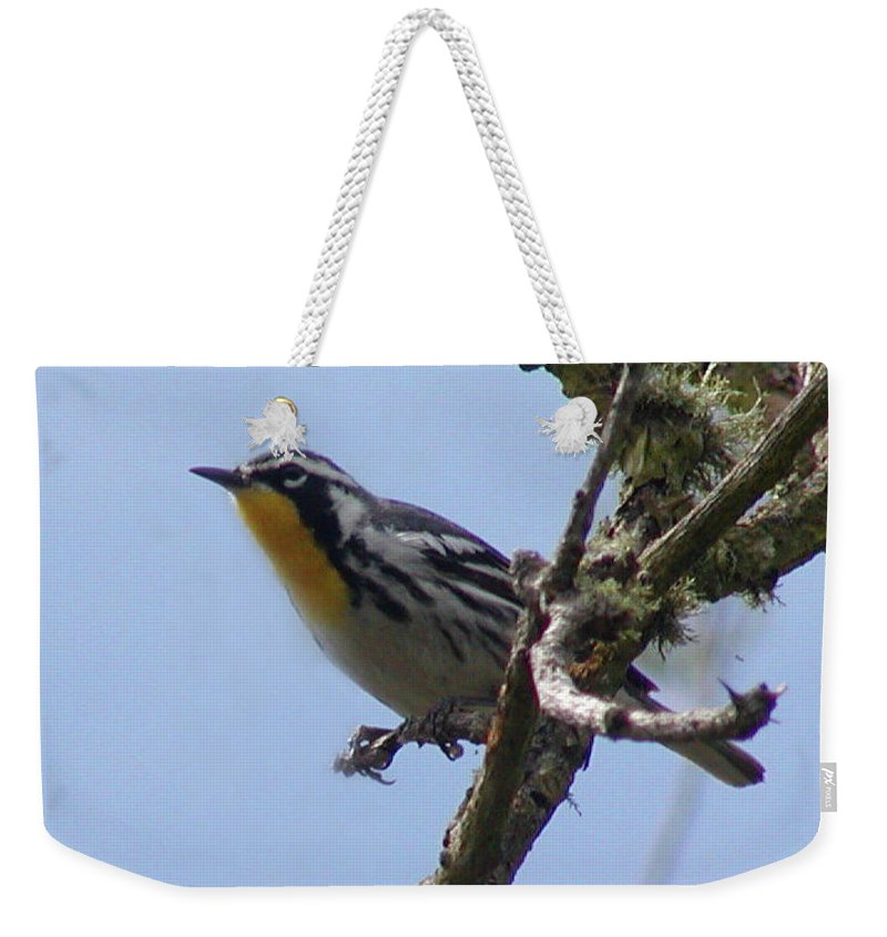 Roena King Weekender Tote Bag featuring the photograph Yellow-throated Warbler by Roena King