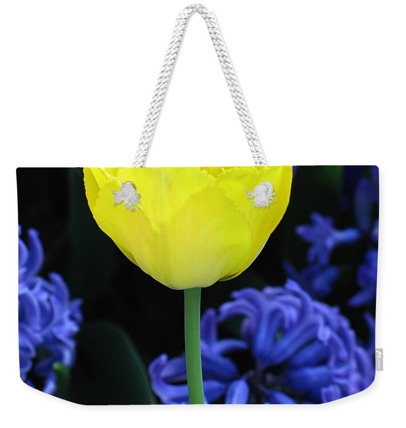 Tulip Weekender Tote Bag featuring the photograph Yellow Tulip And Hyacinth by Greg Matchick