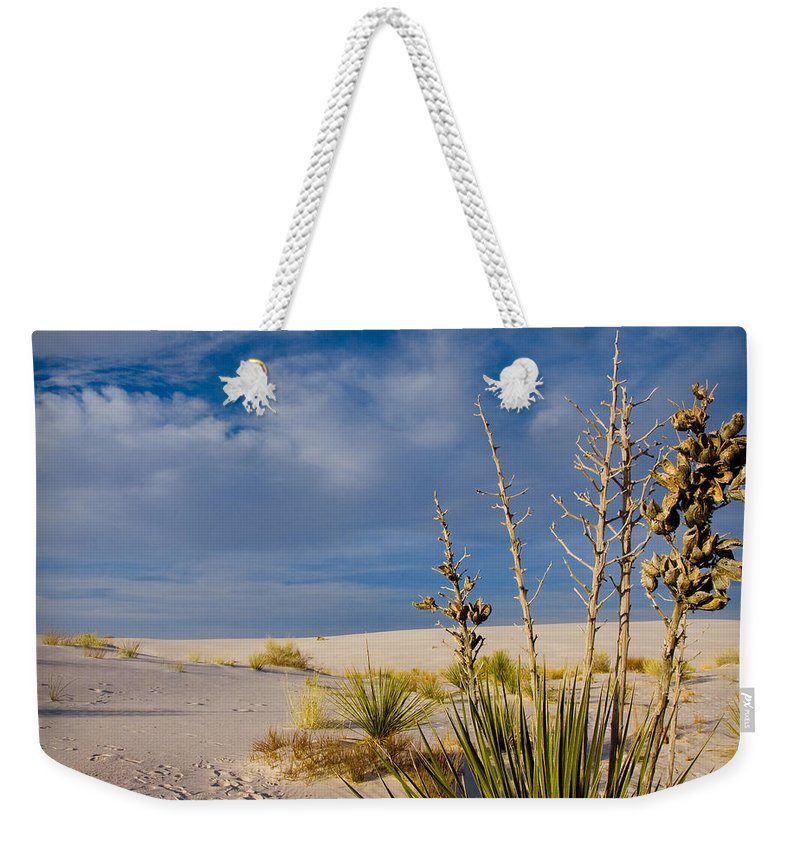 New Mexico Weekender Tote Bag featuring the photograph Yucca 1 by Sean Wray
