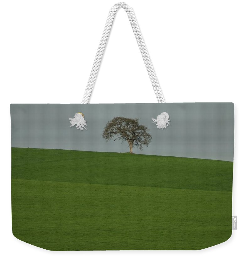 Tree Field Weekender Tote Bag featuring the photograph A Lone by Sara Stevenson