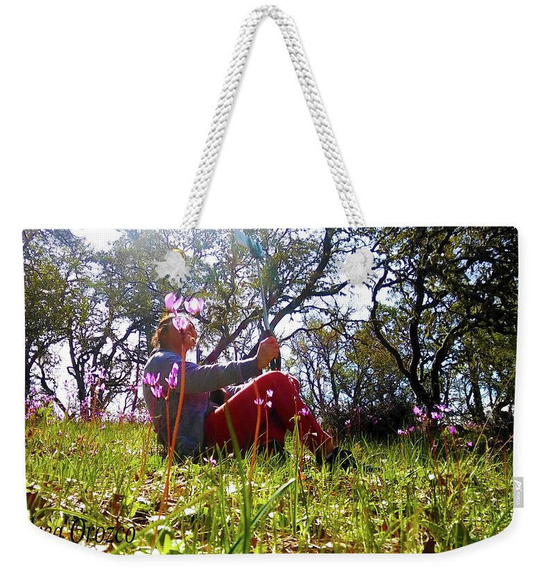 Grass Weekender Tote Bag featuring the photograph Dramatic View Point-1 by Andrea Orozco