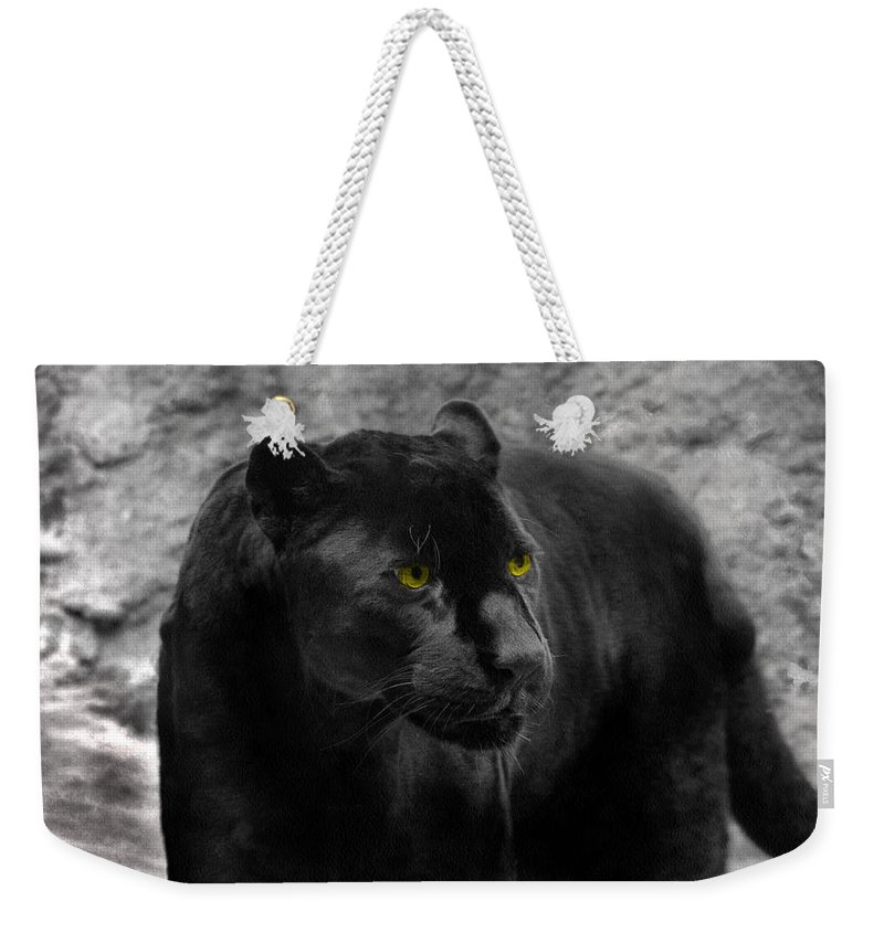 Black Weekender Tote Bag featuring the photograph Black Leopard by Sergey Lukashin
