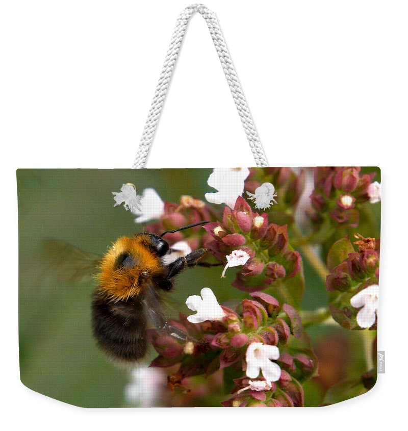 Lehtokukka Weekender Tote Bag featuring the photograph Cuckoo Bumblebee by Jouko Lehto