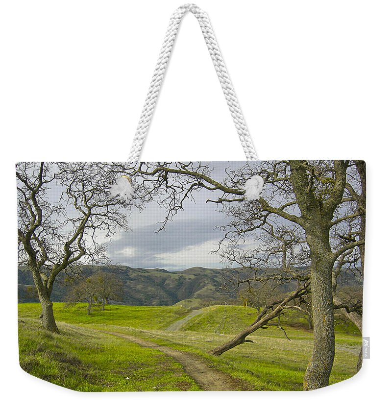 Landscape Weekender Tote Bag featuring the photograph East Ridge Trail Spring by Karen W Meyer