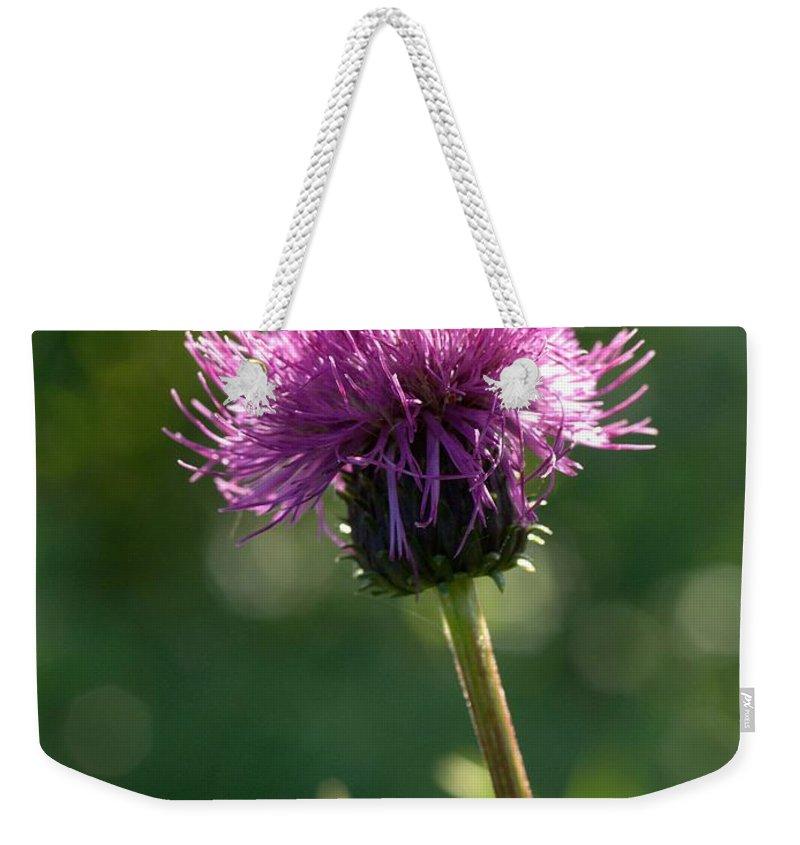 Lehtokukka Weekender Tote Bag featuring the photograph Melancholy Thistle by Jouko Lehto