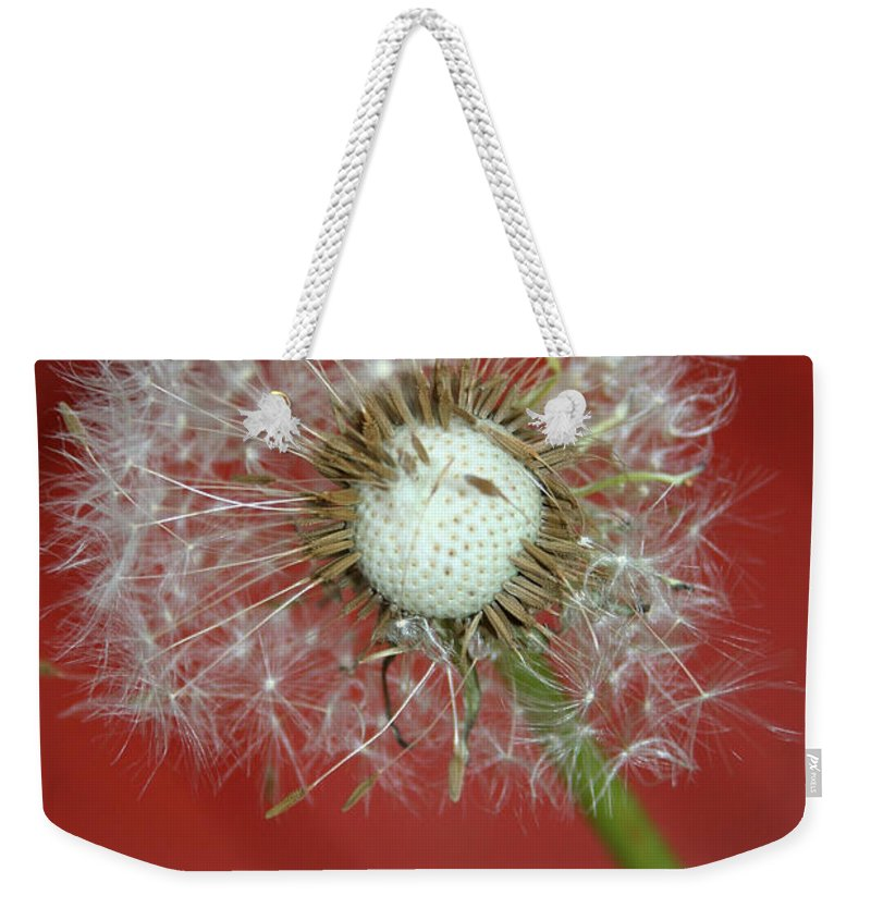Nature Weekender Tote Bag featuring the photograph Nature Red by Linda Sannuti