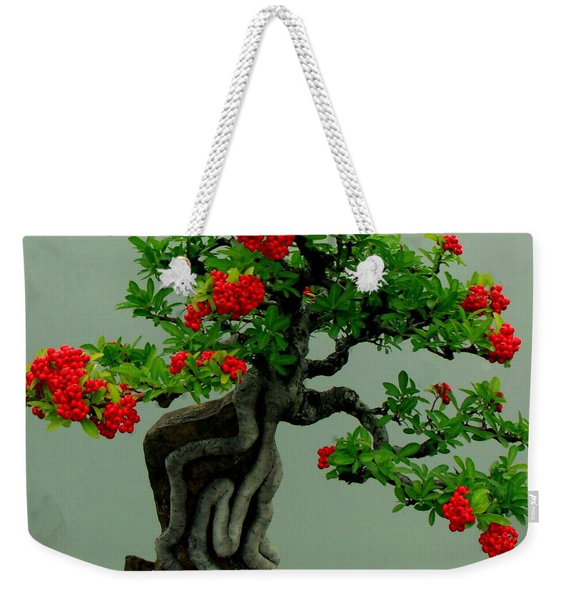 Bonsai Weekender Tote Bag featuring the photograph Red Berried Bonsai by Erin Rednour