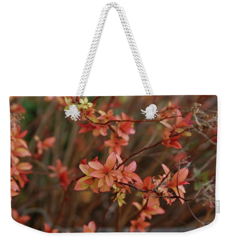 Gardens Weekender Tote Bag featuring the photograph Spirea 1280 by Guy Whiteley