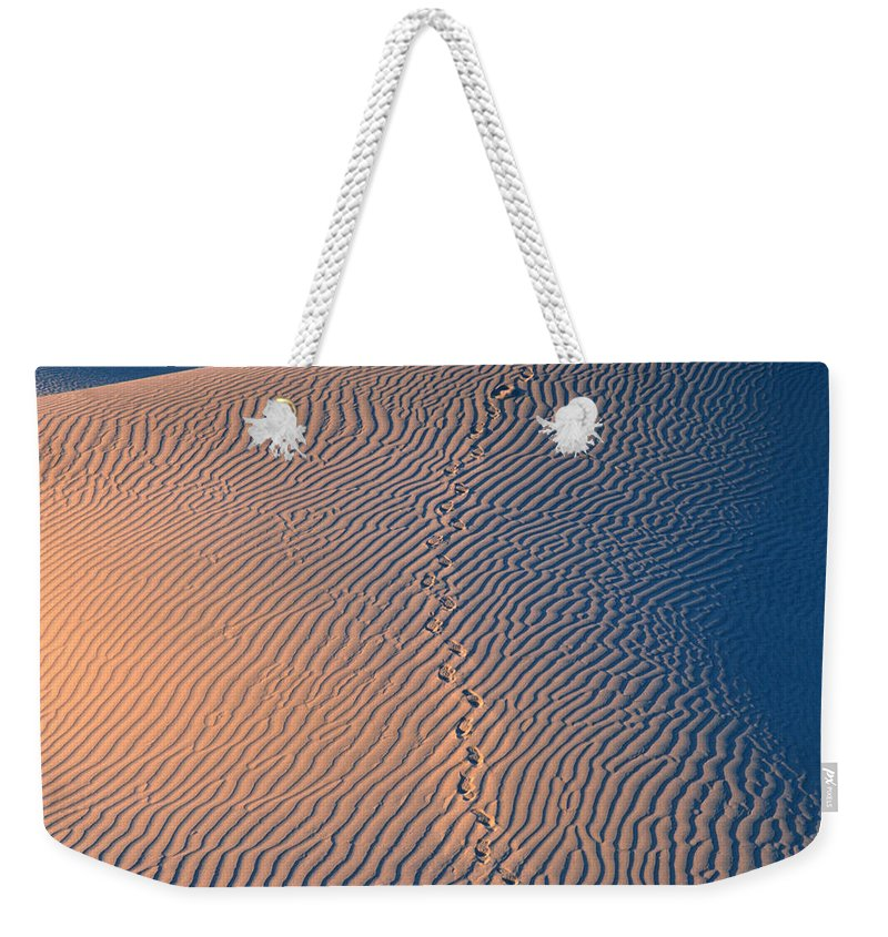 Death Valley National Park Weekender Tote Bag featuring the photograph Tracks At First Light In Death Valley by Sandra Bronstein