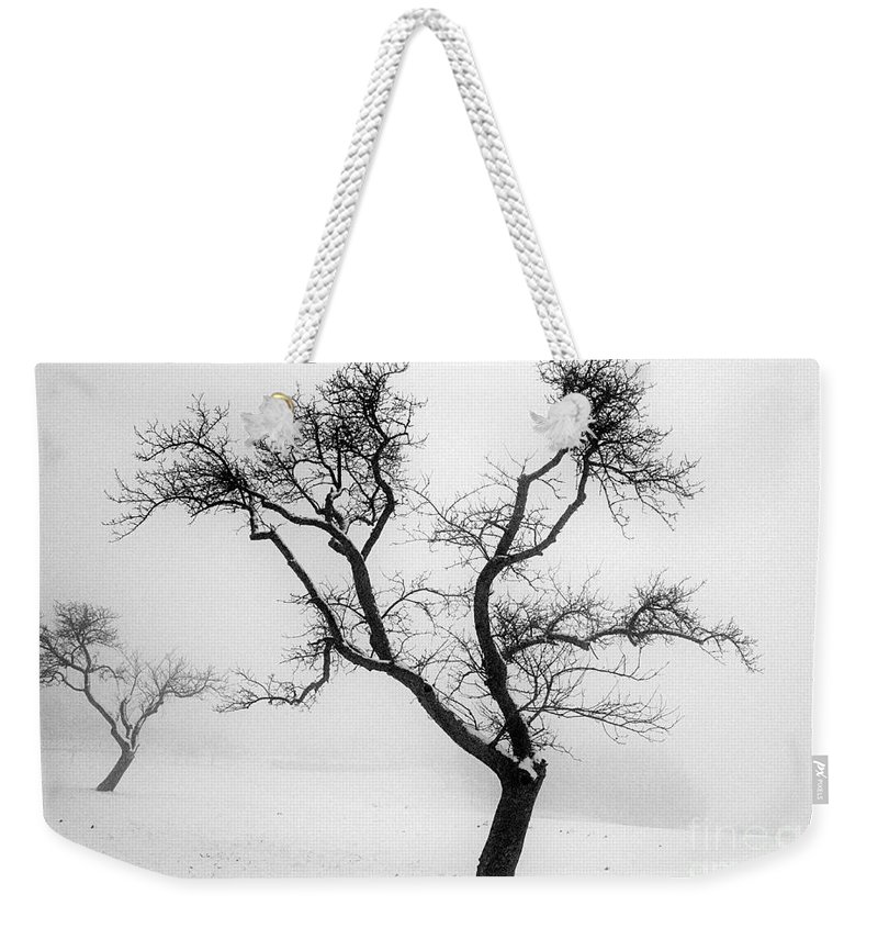Empty Weekender Tote Bag featuring the photograph Tree In The Snow by Ilan Amihai